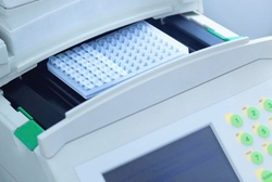 PCR Thermal Cyclers Category